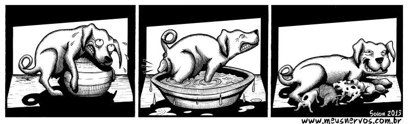 cachorro parto humanizado 01